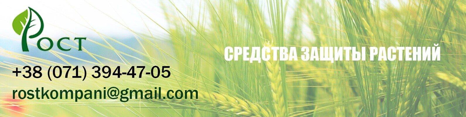 ооо РОСТ ДНР